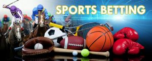 Learn the Online Sportsbook Betting System